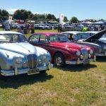 Various Daimler cars