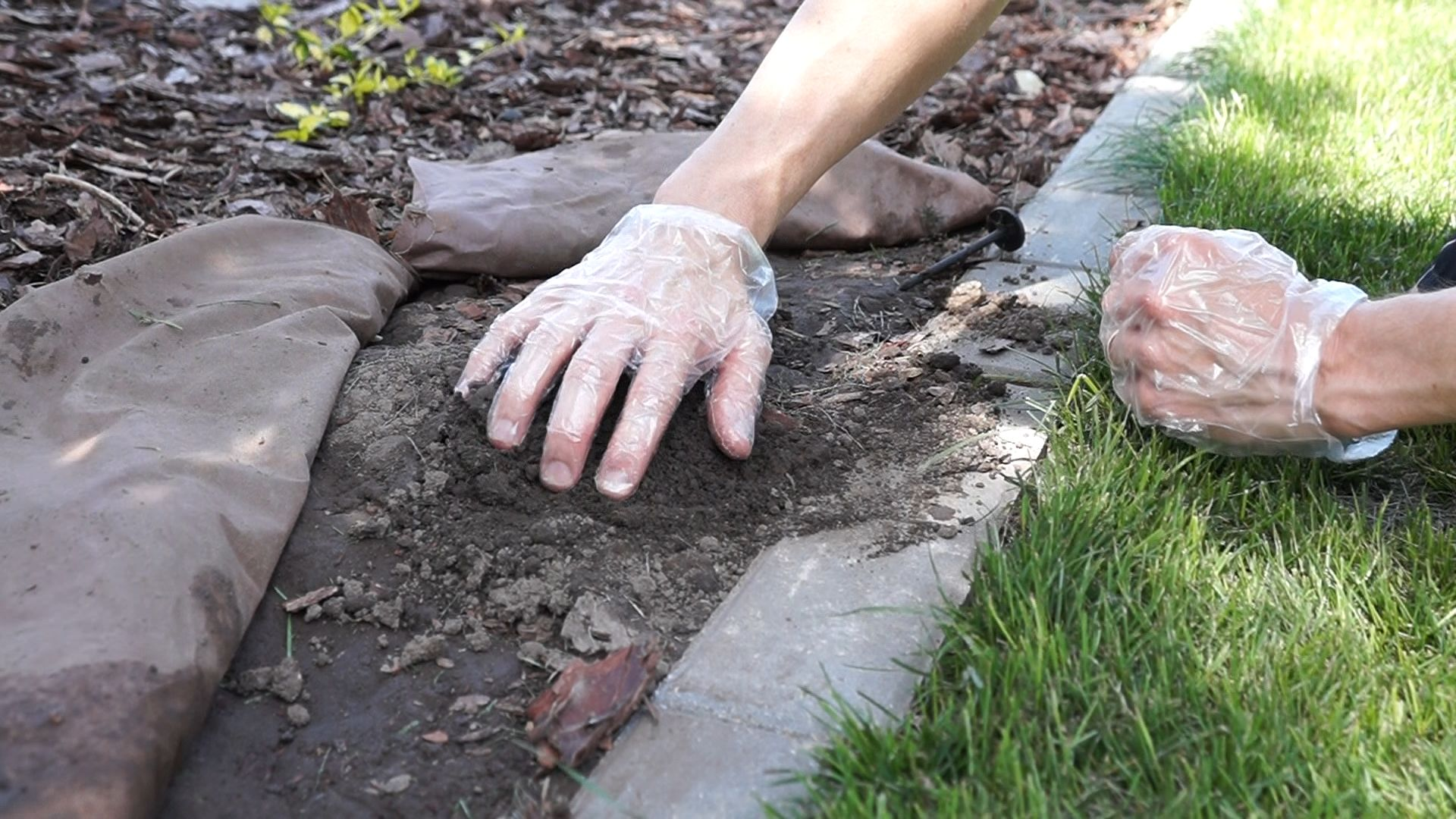How To Remove Moles From Your Yard
